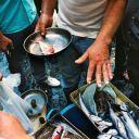 pesce ok - Copyright © laura_giornobalordo