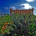 Valle dei templi Agrigento - foto by Peppe Cumbo