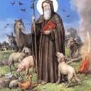 Sant'Antonio Abate, patrono di Castrofilippo in diretta web