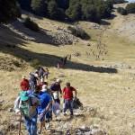 Parco Madonie - trekking 300dpi 2